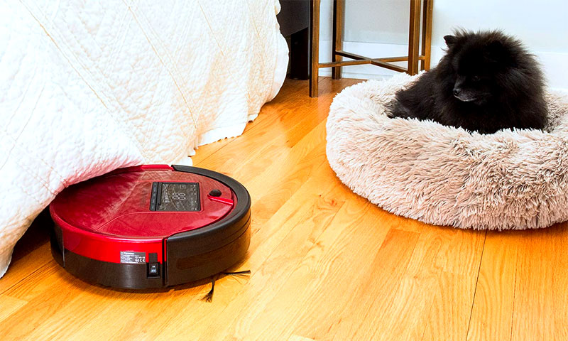 black dog looking at a robot vacuum cleaner