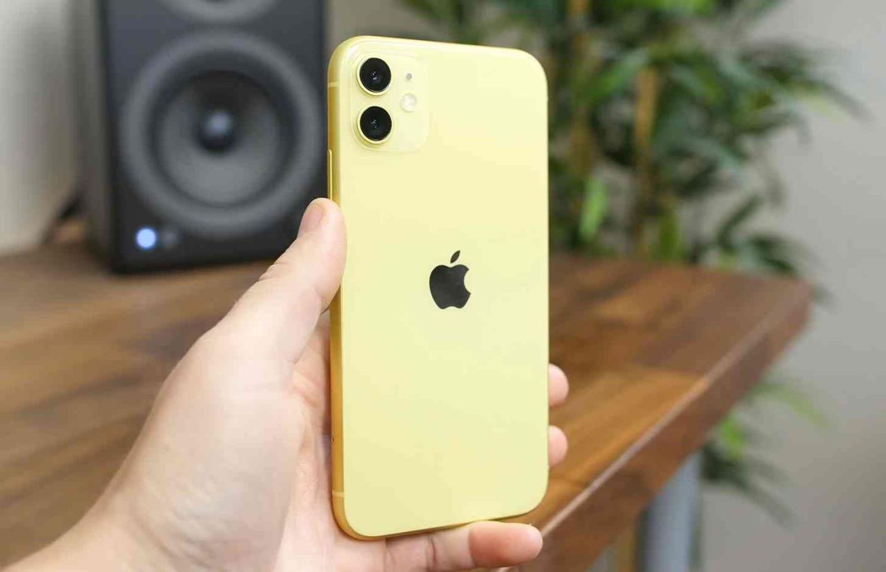 apple iphone 11 nas mãos