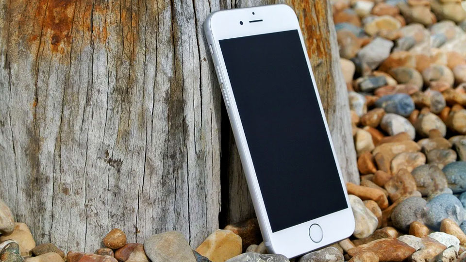 iphone 8 leaning against a tree